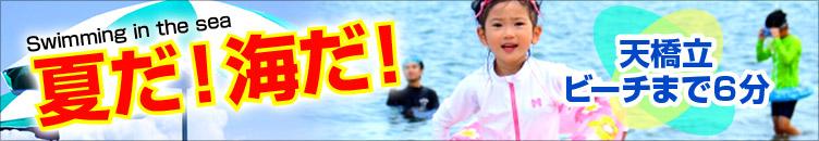 夏だ!海だ!